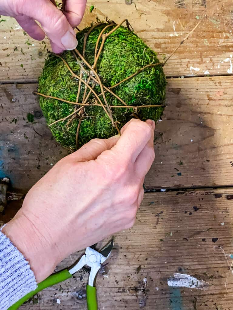 making a topiary
