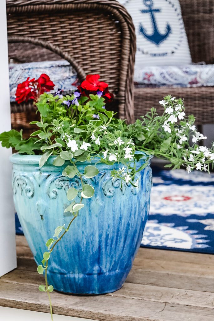 Red, white, blue flowers in pot