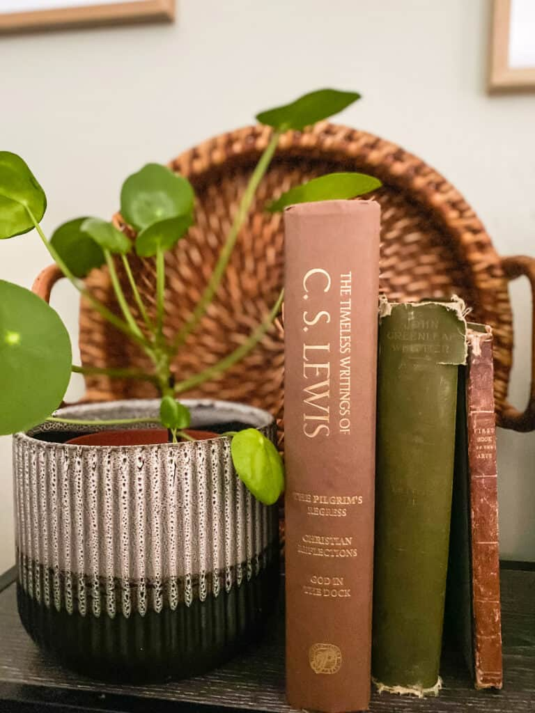 old books and plant