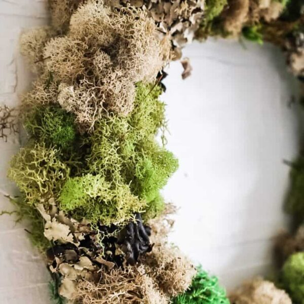 anthropologie dupe moss wreath
