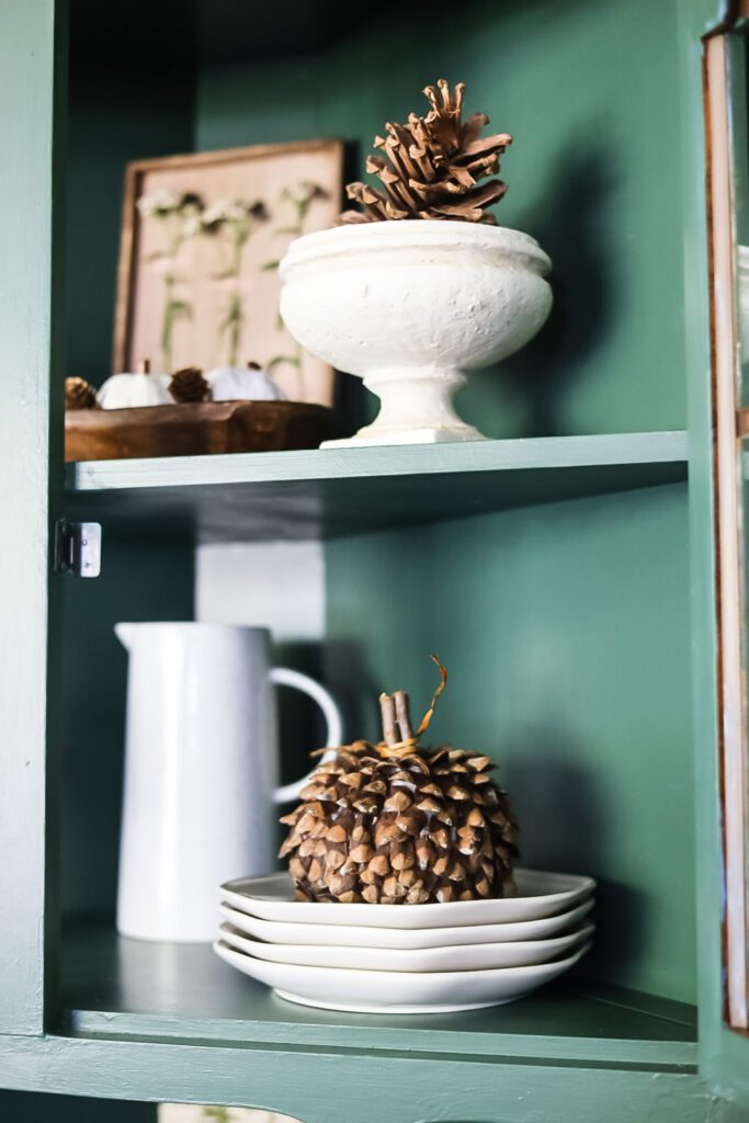 white dished and pine cones